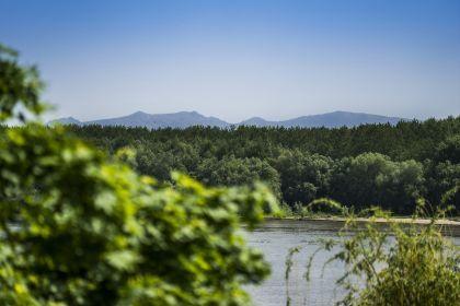 The natural park Balta Mică a Brăilei